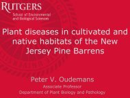 Plant diseases in cultivated native habitats - State of New Jersey