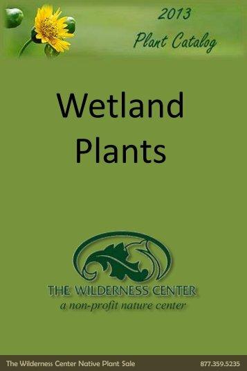 Wetland species - The Wilderness Center