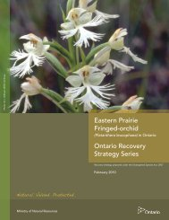 Eastern Prairie Fringed-orchid - Ministry of Natural Resources ...