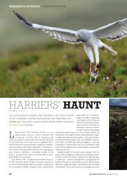 Download and read this feature - Scotland Outdoors Magazine