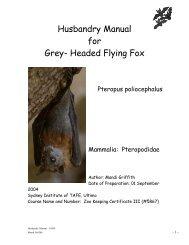 Husbandry Manual for Grey- Headed Flying Fox - Nswfmpa.org