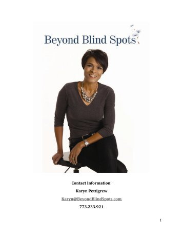 Beyond Blind Spots™ press kit