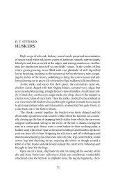 D. E. Steward
