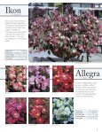 Download the Floranova 2011 Catalogue - Page 6