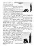 Rifle-[ rifles - Wolfe Publishing Company - Page 5