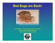 Bed Bugs are Back! - University of Nevada Cooperative Extension