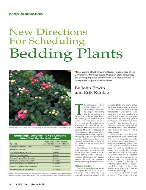 New Directions For Scheduling Bedding, What Is Meant By Bedding Plants