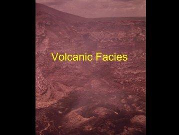 Volcanic Facies.pdf