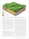 View - Info Ngwa - Page 5