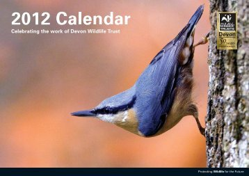 w - Devon Wildlife Trust