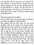 The Bastard of Istanbul - Page 6