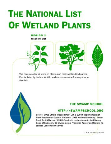 Wetland Plant Guide Region 2 - The Swamp School