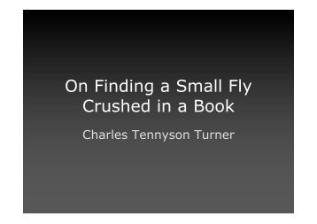 On Finding a Small Fly Crushed in a Book - 12 E1 Cambridge English