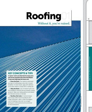Roofing 01 - Without it, you're ruined. - Green Builder