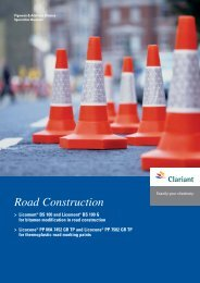 Road Construction - Clariant