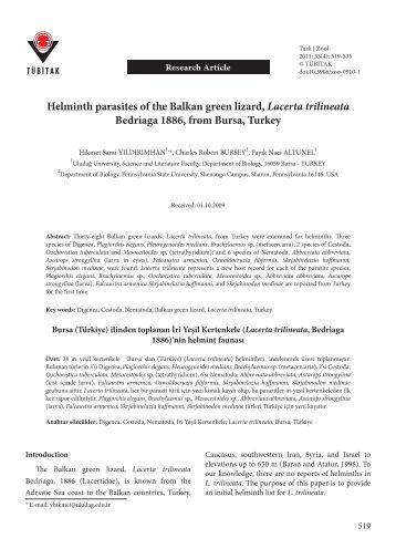 Helminth parasites of the Balkan green lizard, Lacerta trilineata ...