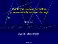 Plants that produce dermatitis, photosensitivity and liver damage