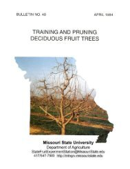 Training and Pruning Deciduous Fruit Trees - Missouri State ...