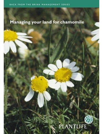 Managing your land for chamomile - Plantlife