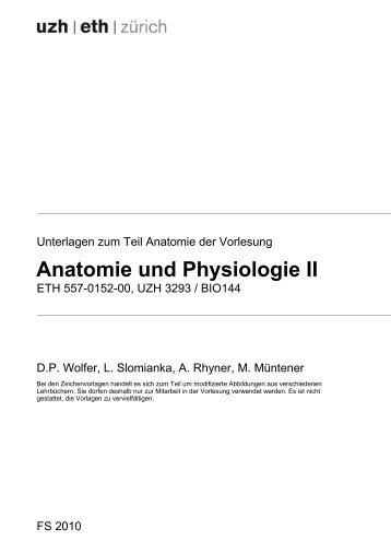 Beste Unterschied Zwischen Der Anatomie Und Physiologie 1 Und 2 ...