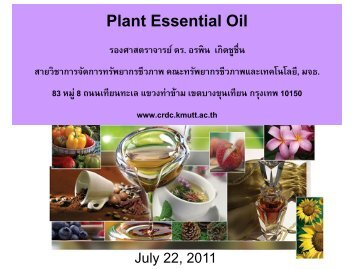 Plant Essential Oil - CRDC