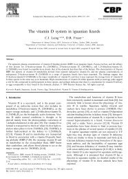 The vitamin D system in iguanian lizards - Reptile UV Info