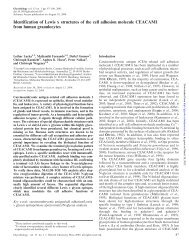 Identification of Lewis x structures of the cell adhesion molecule ...