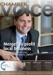 Merger to profit local business - FI holding page