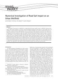 Numerical Investigation of Road Salt Impact on an Urban Wellfield