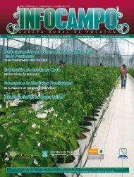 Publicación 25 - SEP-OCT 2010 - Campoyucatan.gob.mx