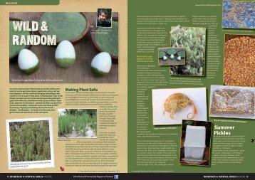 WILD & RANDOM - Wild Man Wild Food