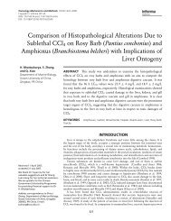Comparison of Histopathological Alterations Due to Sublethal CCl4 ...