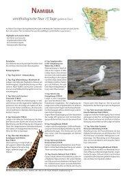 NAMIВIA ornithologische Tour 15 Tage - RB Reise Beratung AG