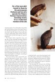 India's Vanishing Vultures - Page 7