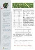 RE Resin - TrisKem International - Page 4
