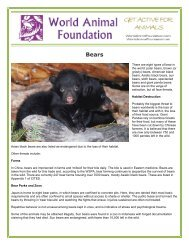 Bears - World Animal Foundation