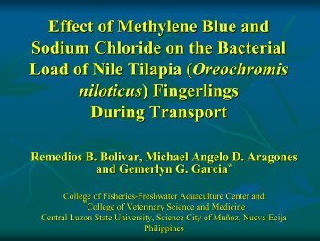 Effect of Methylene Blue and Sodium Chloride on the Bacterial Load ...