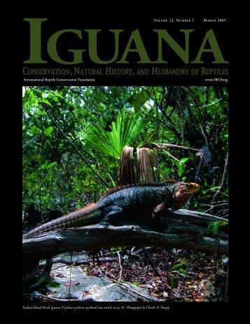 "Stephens Island: Land of ""Lizards"" - International Reptile ..."