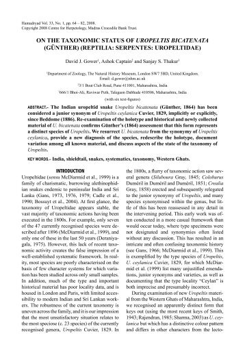 on the taxonomic status of uropeltis bicatenata - BMNH