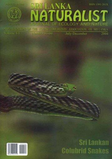 Sri Lankan Colubrid Snakes - Reptiles of Sri Lanka