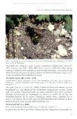Beiträge zur Entomofaunistik - Seite 7