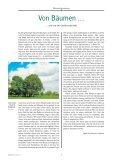 Der Wald und wir - Landeskirche - Seite 2