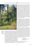 Der Wald und wir - Landeskirche - Seite 5