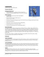 Loggerhead Shrike Protection Warranted Endangered Species Act ...