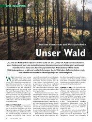 Zwischen Lebensraum und Wirtschaftsfläche Unser ... - Wild und Hund