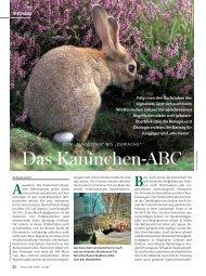Das Kaninchen-ABC - Wild und Hund