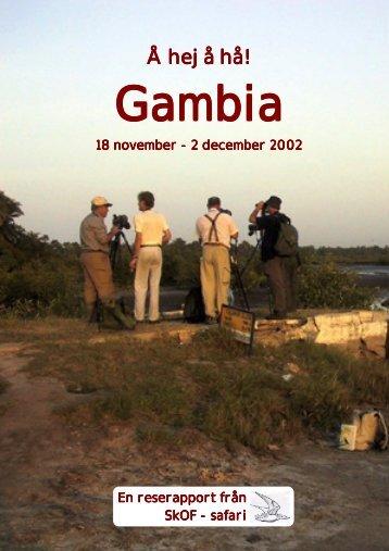 Gambia 2002 - Skånes Ornitologiska Förening