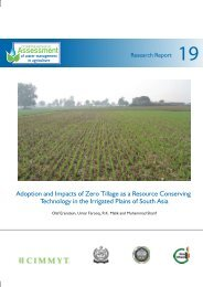 Download (PDF) - CGIAR Impact