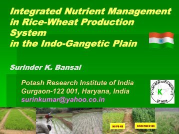 Integrated Nutrition Management in Rice-Wheat Production System ...