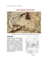 NEW SAUROPOD DISCOVERY - Dinosauria International